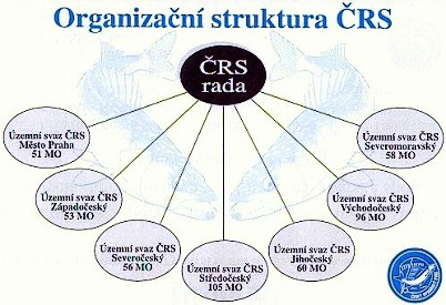 crs_struktura