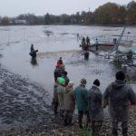 výlov rybníka Ležáneckého 2016 (18)